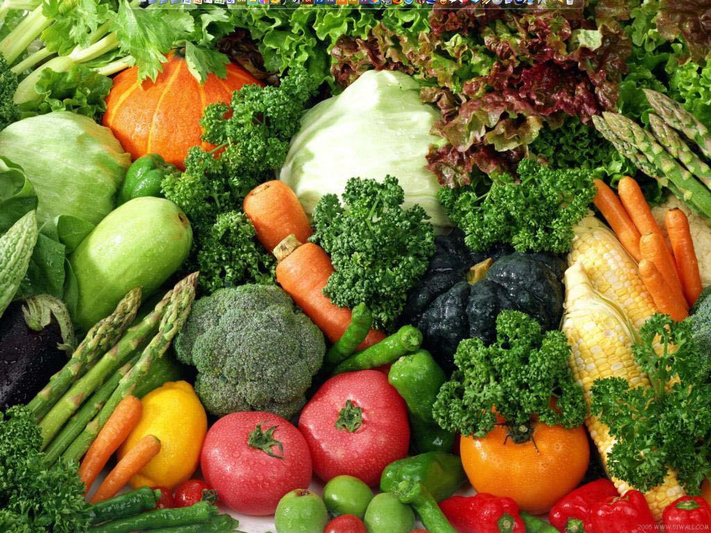 ضوابط الأطعمة المحرمة في الشريعة الإسلامية Kriteria Makanan